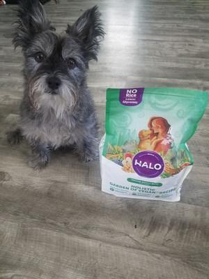 Halo Vegan Dog